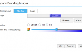 Adapt your Title Bar Colour - screenshot from Business ByDesign