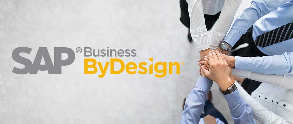 We Are The Business ByDesign Experts