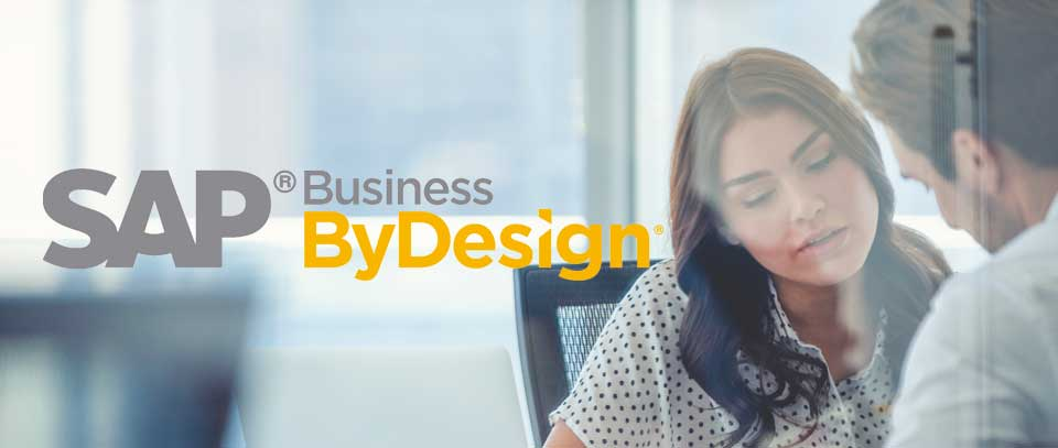 Business ByDesign Consultancy