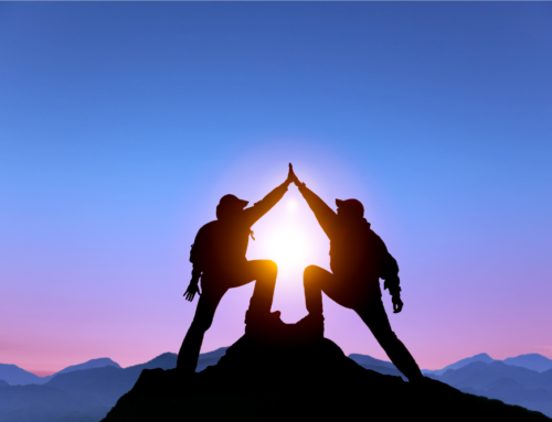 CEO and CFO – The greatest double act of all time?