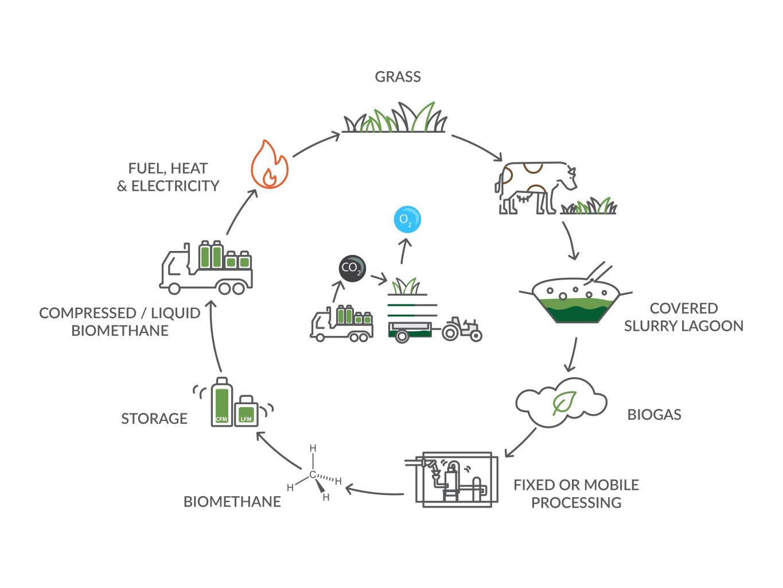 Bennamann circle clean green energy